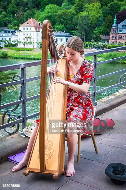 heidelberg harpist - saiteninstrument spielen stock-fotos und bilder