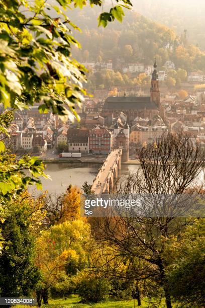 "heidelberg in the german state of baden-württemberg on the river neckar - ""sjoerd van der wal"" or ""sjo"" stock pictures, royalty-free photos & images"