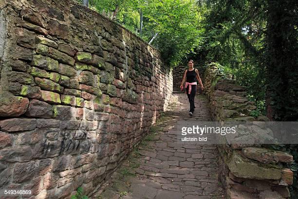 Heidelberg-Neuenheim, Heiligenberg, Schlangenweg, footpath between Philosophenweg and old town, young woman walking
