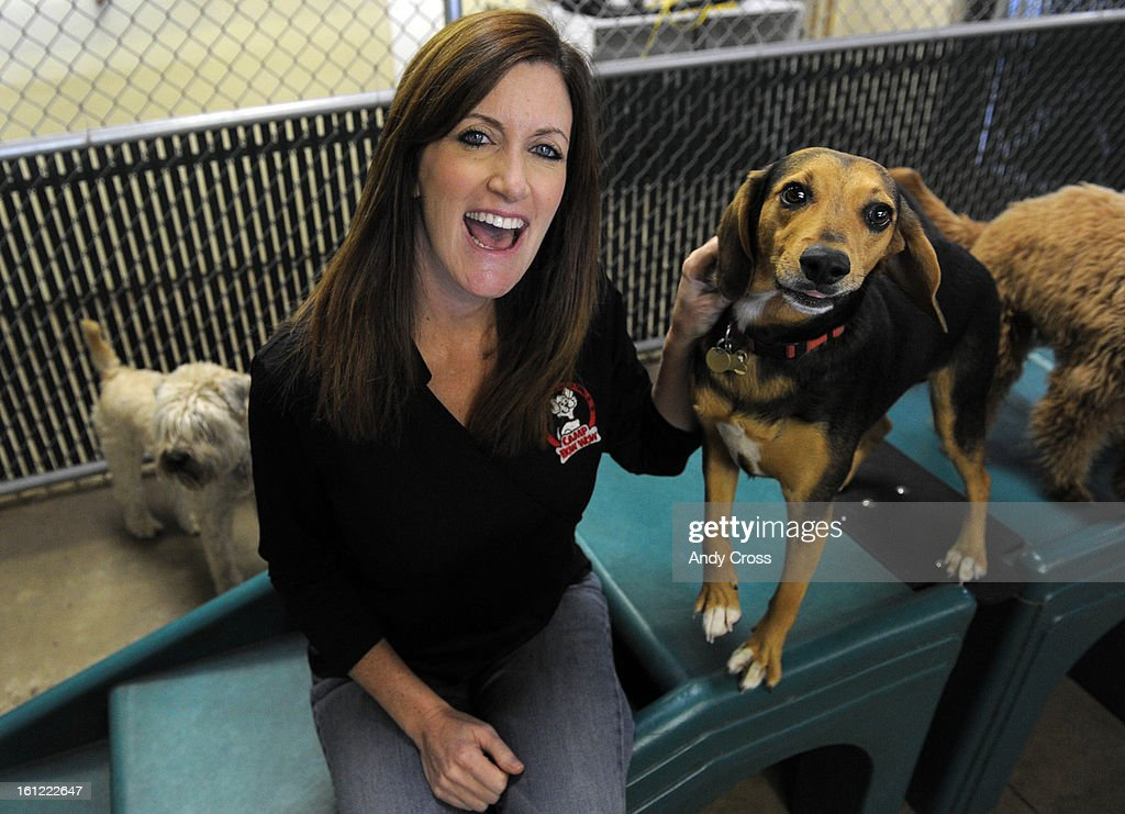 "BOULDER, CO-- Heidi Ganahi, founder of Camp Bow Wow at the Camp Bow Wow franchise in Boulder spends time with ""Sulley"" (right) Thursday afternoon. Andy Cross, The Denver Post : Fotografía de noticias"