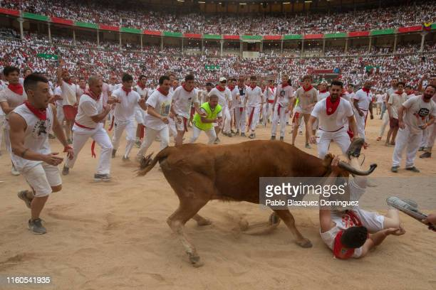 A heifer tosses a reveller in the bullring during the second day of the San Fermin Running of the Bulls festival on July 07 2019 in Pamplona Spain...