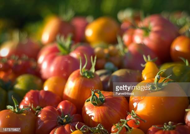 Heirloom Tomaten und Gemüse Hintergrund, Bio-Gemüse auf Bauernmarkt