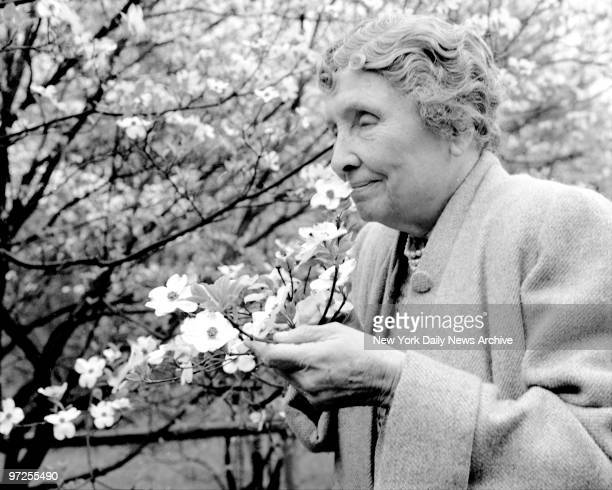 Helen Keller on her fouracre estate Arcan Ridge near Westport Conn Dogwood blooms again and Miss Keller spends a quiet moment in her garden