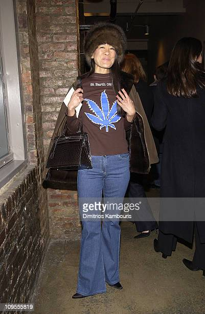 Helen Lee Schifter during MercedesBenz Fashion Week Fall 2003 Collections Calvin Klein Arrivals at Milk Studios in New York City New York United...