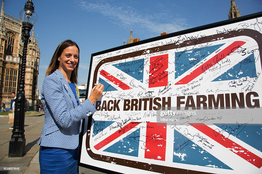 Helen Whately MP at the National Farmers Union (NFU) took machinery, produce, farmers and staff to Westminster to encourage Members of Parliament to back British farming, post Brexit on 14th September 2016 in London, United Kingdom. MPs were encouraged to sign the NFUs pledge and wear a British wheat and wool pin badge to show their support.