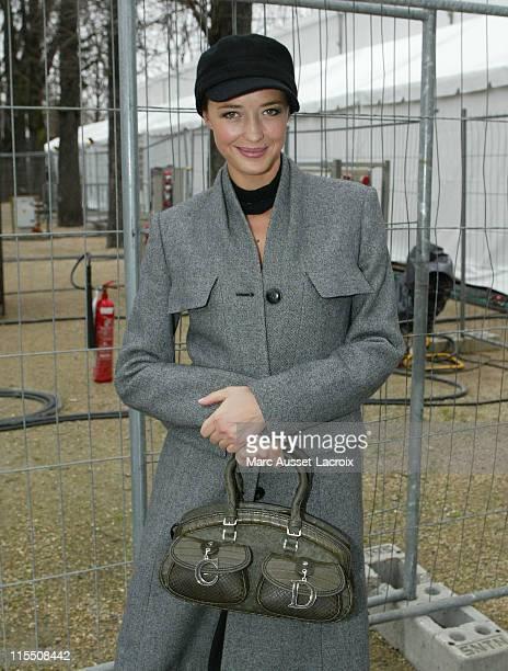 Helene de Fougerolles during Paris Fashion Week Fall/Winter 2007 - Christian Dior - Arrivals in Paris, France.