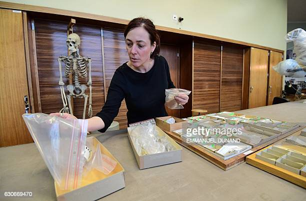 Helene Rougier anthropologist at California State University Northridge in the United States displays some of the 96 bones and three teeth from five...