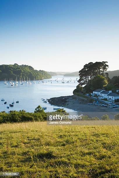 helford river at helford passage. cornwall. england. uk. - estuary stock pictures, royalty-free photos & images