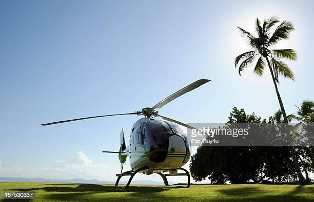 Helicóptero y palm tree