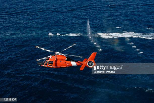 a helicopter crew trains off the coast of jacksonville, florida. - coast guard stock pictures, royalty-free photos & images