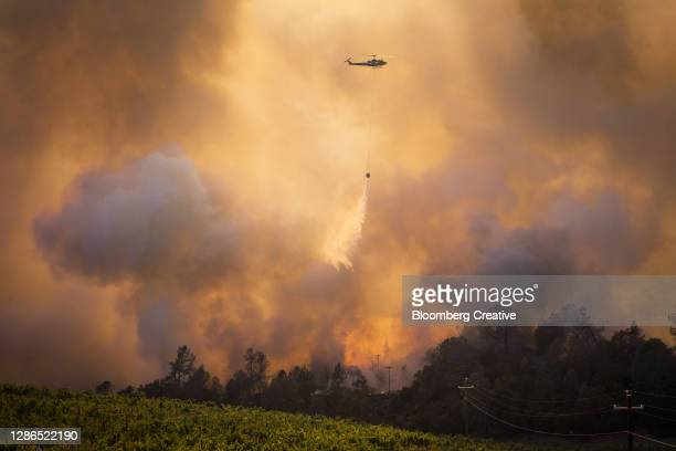a helicopter fighting a forest wildfire - natural disaster stock pictures, royalty-free photos & images