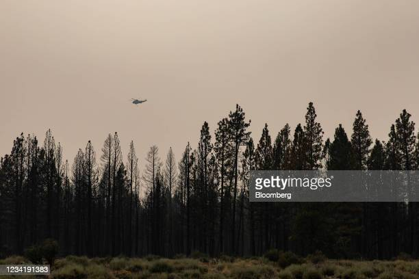 Helicopter flies over charred forest land damaged by the Bootleg Fire in the mountains north of Bly, Oregon, U.S., on Saturday, July 24, 2021....