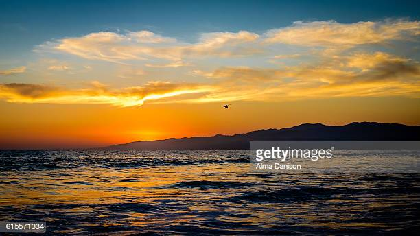 helicopter flying towards the sunset - alma danison stock photos and pictures