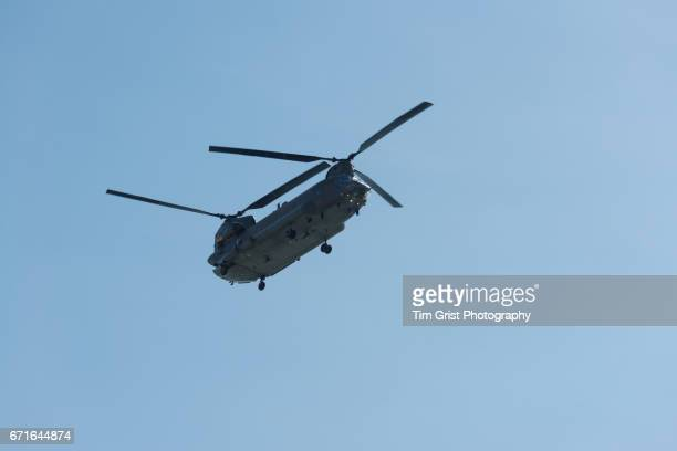 helicopter in flight - chinook dog stock photos and pictures