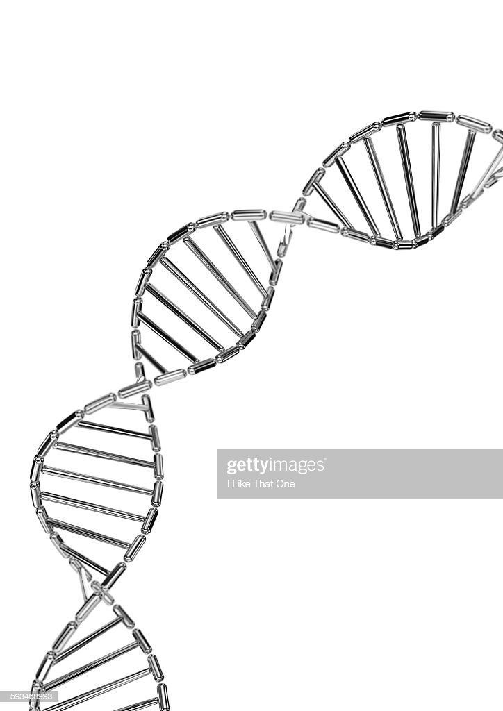 DNA helix made from mirror polished metal capsule : Stock Photo