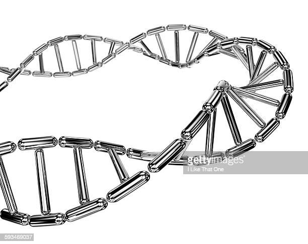 dna helix made from mirror polished metal capsule - atomic imagery stock pictures, royalty-free photos & images