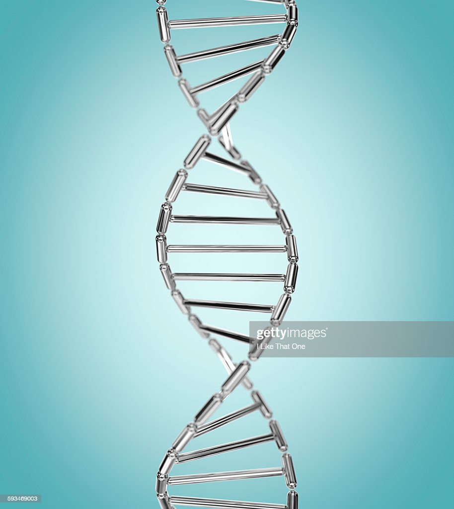DNA helix made from mirror polished metal capsules : Stock Photo