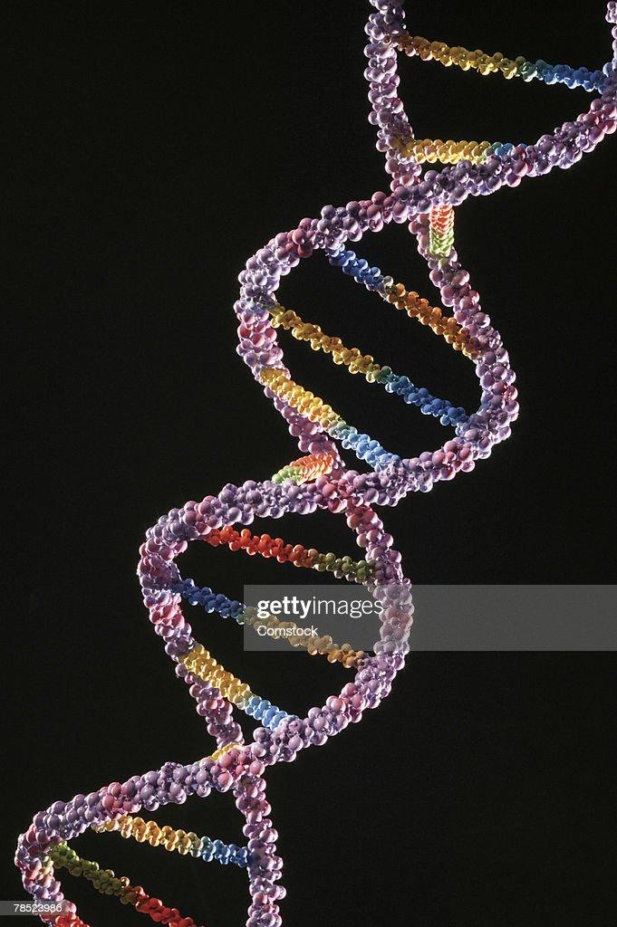 DNA helix : Stock Photo