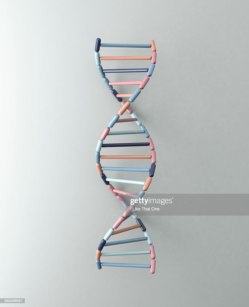 DNA Helix resting against a pale grey backdrop : Stock Photo
