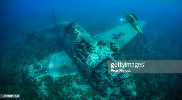 hellcat - solomon islands stock pictures, royalty-free photos & images