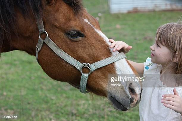 olá, meu amigo. - girl blowing horse - fotografias e filmes do acervo