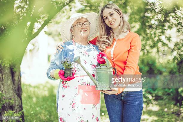 hello spring! - beautiful granny stock photos and pictures