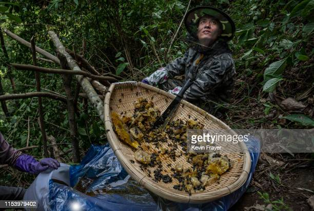A helper looks up as he waits for more fresh wild cliff honey as Chinese ethnic Lisu honey hunters not seen gather it in a gorge on May 11 2019 near...