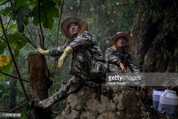 Helpers watch and wait as Chinese ethnic Lisu honey hunters not seen gather wild cliff honey from hives in a gorge on May 11 2019 near Mangshi in...