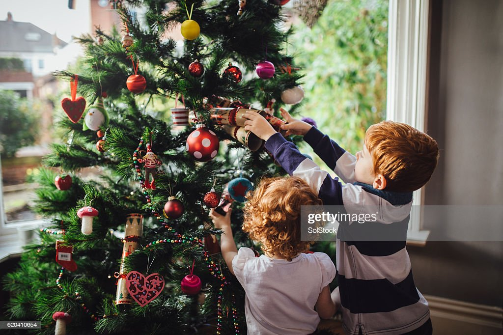 Helping mum with the tree : Stock Photo