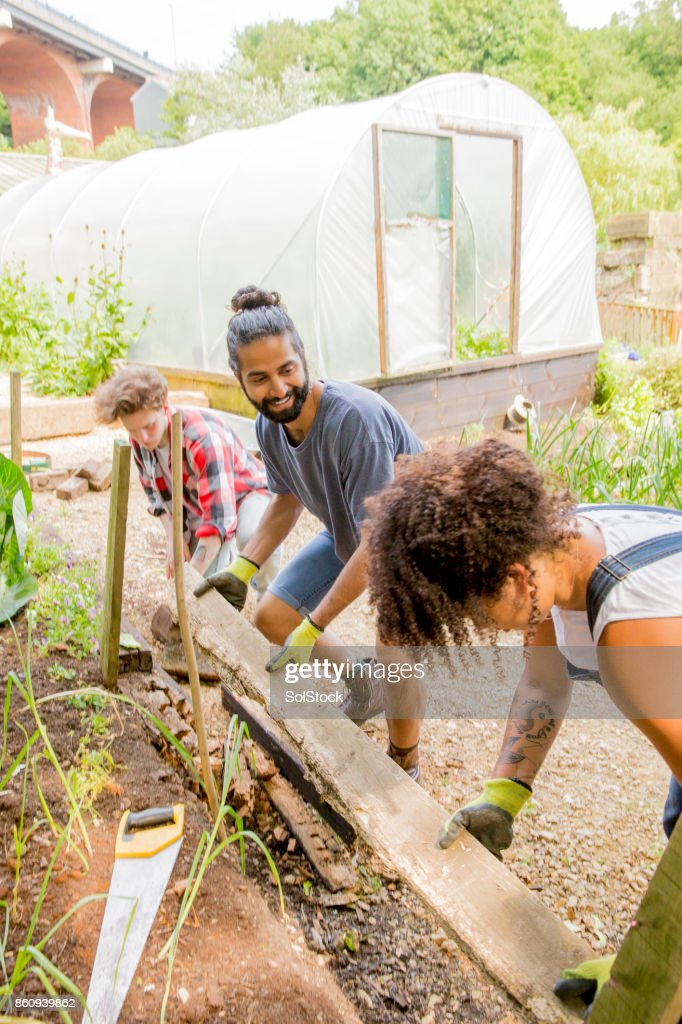 Helping Out at the Farm : Stock Photo