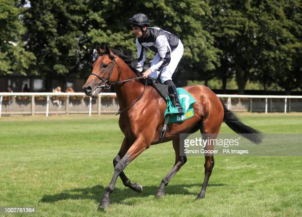 Helvetian ridden by Charles Bishop goes to post