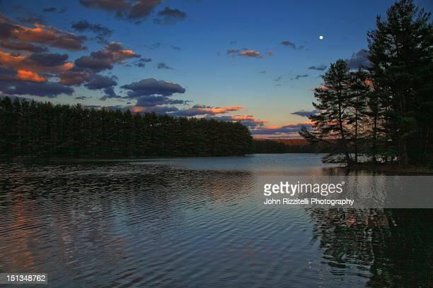 hemlock reservoir - hemlock tree stock pictures, royalty-free photos & images