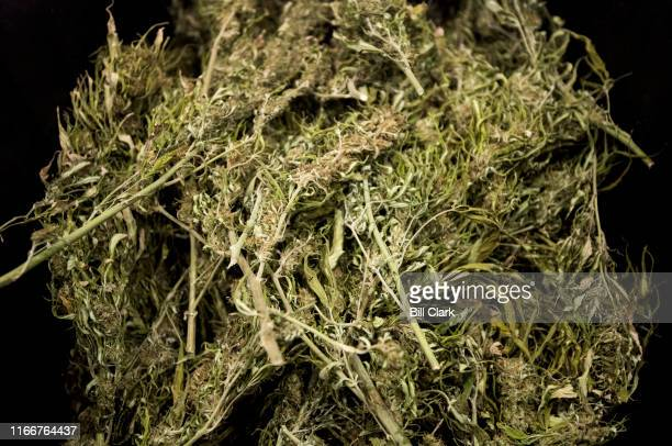 Hemp on display at the Tennessee Grown booth at the Southern Hemp Expo at the Williamson County Agricultural Exposition Park in Franklin TN on...