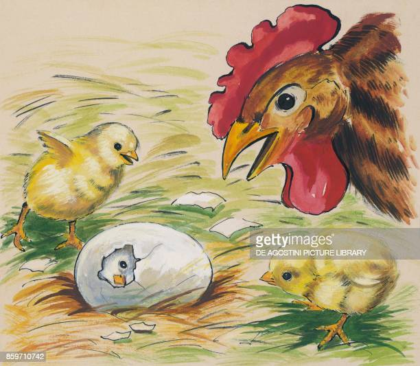 A hen and two chicks looking at a hatching egg children's illustration drawing
