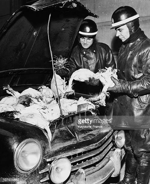 Hen Smuggling In Milan On December 1957