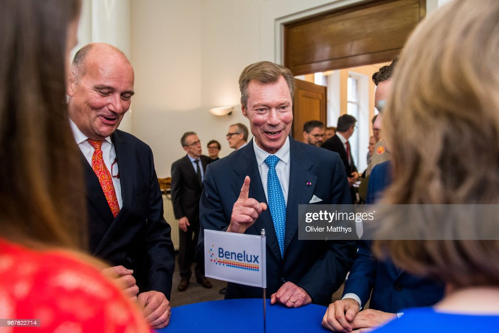 Henri Grand Duke of Luxembourg attends the 60 years Benelux Council celebration on June 5, 2018 in Brussels, Belgium.