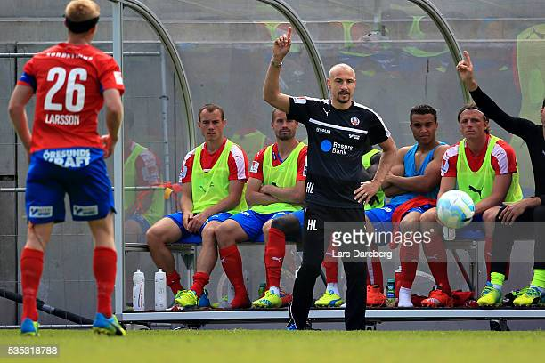 Henrik Larsson head coach of Helsingborgs IF during the Allsvenskan match between Helsingborgs IF and IFK Goteborg at Olympia on May 29 2016 in...