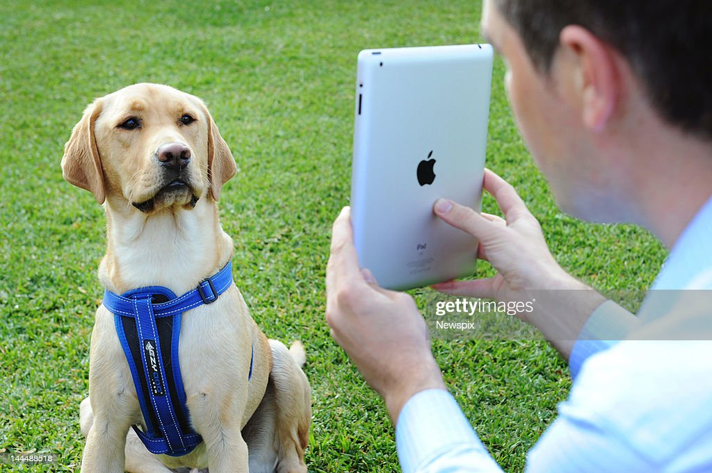 'Henry' the dog talks to his owner through Skype in Melbourne, Victoria. Luxury pet accommodation group Hanrob Pet Hotels are launching Petskype so people can watch and even chat to their cats and dogs while travelling interstate or overseas.