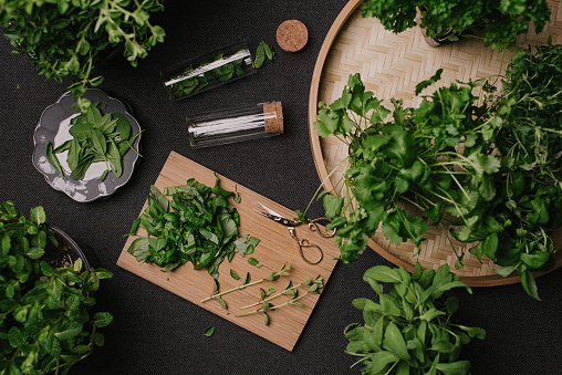 Herb leaves fresh picked herbs saved and dried 936638790