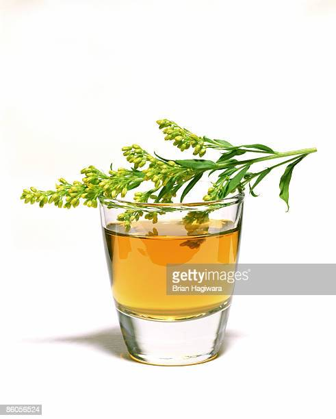 Herbal infusion mouthwash