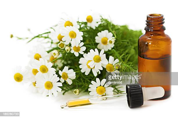 Herbal Medicine: Chamomile