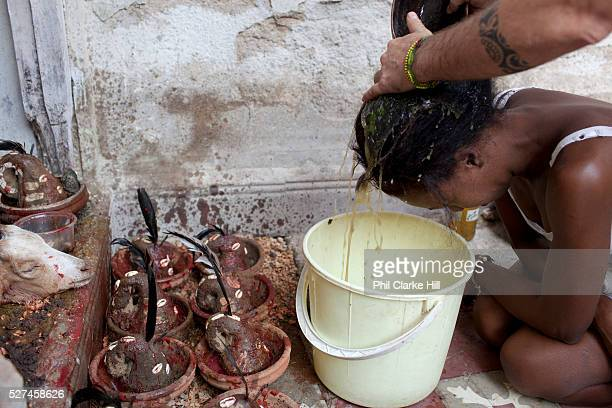 A herbal mixture is used to cleanse the heads of those being initiated The mixture is prepared by hand for a long time the idea being that it will...