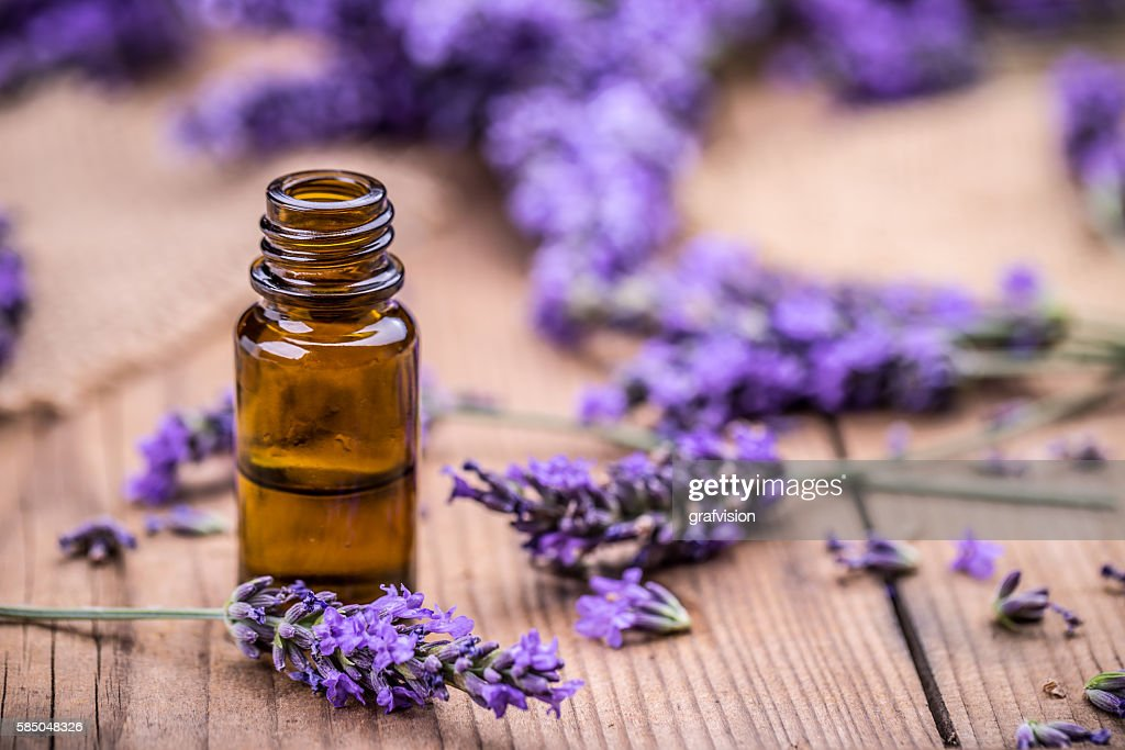 Herbal oil and lavender flowers : Stock Photo