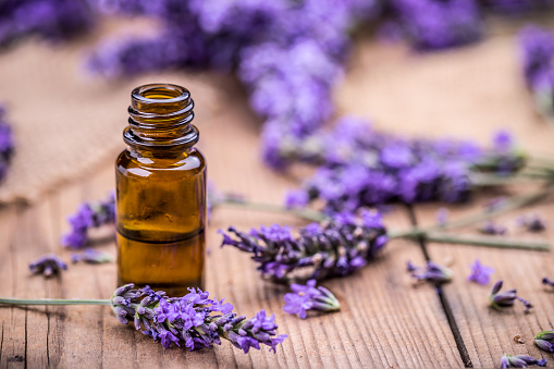 Herbal oil and lavender flowers 585048326