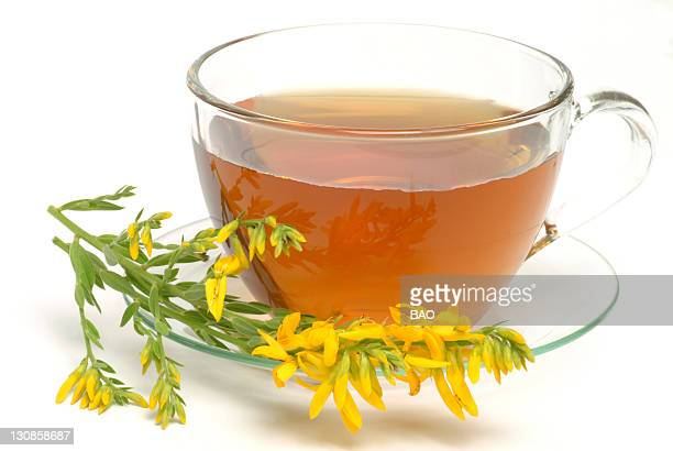 herbal tea from goldenrod - goldenrod stock pictures, royalty-free photos & images
