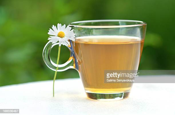 herbal tea - chamomile tea stock photos and pictures