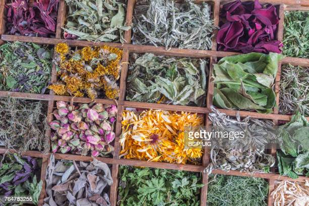 herbalists shop - ginger nettles stock pictures, royalty-free photos & images