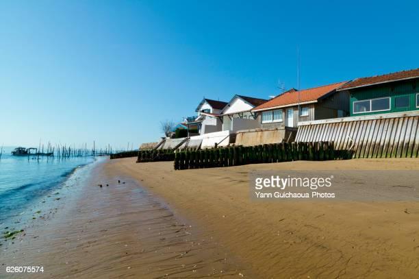 L'Herbe, Arcachon Bay, Gironde Aquitaine, France