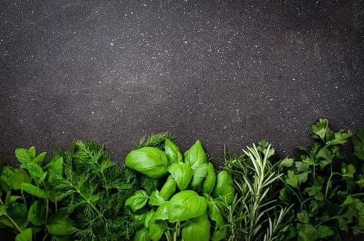 Herbs on dark background 506139722