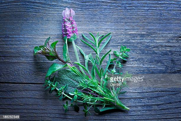 herbs - chamomile tea stock photos and pictures